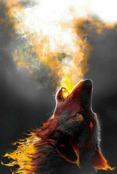...  and the wolf howls....and he hates cold nights ....