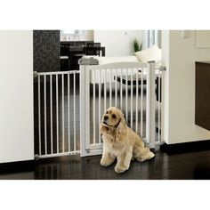 We're going to need a big long pet gate to keep the doggies out of the living room when we're not home. Richell One-Touch Pet Gate 150 - Origami White (Large)