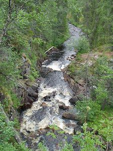 Salmijoki gorge trail 17.7 km. One-day trip. Difficulty classification: demanding.