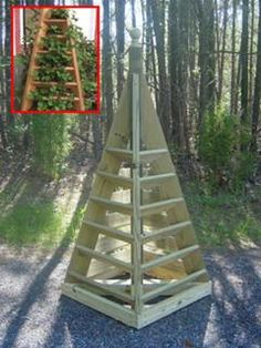 OK, not a small house idea... this is a small yard idea instead. It's a strawberry holder!! :)