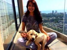 Anushka Sharma's puppy love - http://www.ndtv.com/video/player/news/anushka-sharma-s-puppy-love/313865