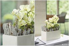 Tiziano Schale Crosia mit Orchideen