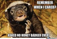 Honey badgers dont care. :)