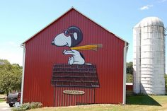 Snoopy the Red Baron!     Great painting for the side of a barn (or any outdoor building).