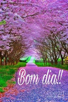 Bom dia!!! Happy Saturday, Happy Day, Portuguese Quotes, Garra, Day For Night, Country Roads, Humor, Landscape, Charlie Brown