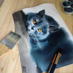 Елена кот инстаграм