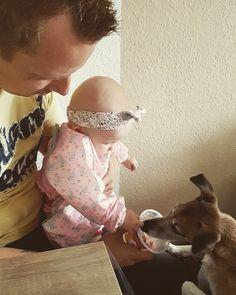 #EndlichPapa Woche 26: #Kind und #Hund sind ein echt gutes Team geworden 😍  #Lebenmithundundbaby #lebenmitkindundhund #kindundhund #babyundhund #baby #hund #dog #hundeleben #jackrussell #jackrussellterrier #terrier #papa #daddysein #papasein #eltern #babyglück #januarbaby #wassermann #itsagirl #januarbaby2017 #edda #imme