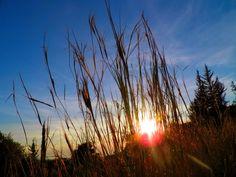 Momentsbook.com: Τα χρώματα ενός ηλιοβασιλέματος αναδεικνύουν όσα έ...