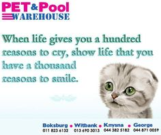 When life gives you a hundred reasons to cry, show life that you have a thousand reasons to smile. #PetPoolWarehouse #SundayMotivation