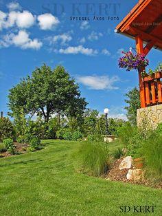 SD KERT - kertépítés, szép kert ötletek, képek, fotók, referencia, kertdesign, kerti megoldások, kialakítások, kertépítés fényképek Arch, Sidewalk, Home And Garden, Outdoor Structures, Longbow, Side Walkway, Walkway, Wedding Arches, Bow