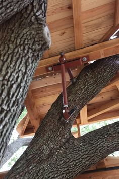 Strut Back Up System - Helpful Sharing Treehouse Cabins, Building A Treehouse, Building A House, Treehouses, Tree Deck, Tree House Plans, Cool Tree Houses, Tree House Designs, House Deck