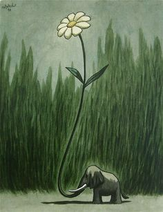 Elephant and a Daisy.  Two of my favs!  Matticchio - 50 Watts