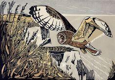 """""""Short-Eared Owl"""" - Pam Grimmond (Linocut)"""