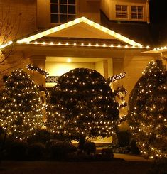 Outdoor Christmas lights idea for tall bushes Outdoor Christmas Light Displays, Best Christmas Lights, Christmas Lights Outside, Christmas Light Installation, Hanging Christmas Lights, Christmas Past, Outdoor Christmas Decorations, Christmas Wishes, All Things Christmas