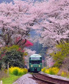 Photo Japon, Japan Photo, Japan Picture, Beautiful Landscape Pictures, Beautiful Landscapes, Beautiful Pictures, Wonderful Places, Beautiful Places, Beautiful Scenery