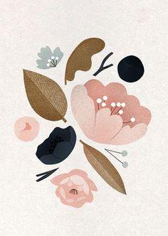 Flowers - Clare Owen