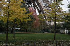 """""""En la base de La Torre"""" Fotografía tomada en La Torre Eiffel, París. Francia. 2011."""