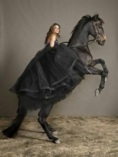 Rachael Finch with Ammo, a powerful black stallion for the promotion of the Melbourne Cup.