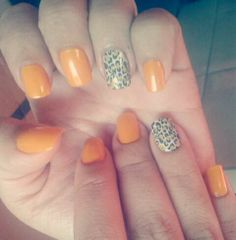 Lindo laranja com oncinha.