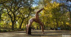 Robert Sturman ile 2014 Ekim sonunda Central Park, New York'taki fotoğraf çekimimden bir kare...  Eka Pada Urdhva Dhanurasana