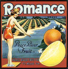 Romance Brand Peace River Fruit Postcard in each seller & make purchase online for cheap. Choose the best price and best promotion as you thing Secure Checkout you can trust Buy bestThis Deals Romance Brand Peace River Fruit Postcard Here a great deal. Vintage Labels, Vintage Postcards, Vintage Ads, Retro Ads, Vintage Clip, Vintage Packaging, Vintage Images, Orange Crate Labels, Fruit Company