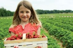 Fruit Picking in Kansas City - KC Going Places - Spring-Summer 2012 - Kansas City, KS