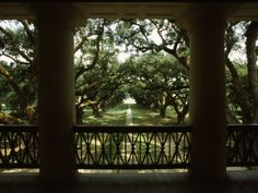 Oak Alley Plantation's balcony-Zac and I had our first dance as husband and wife here :)