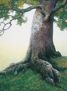 Charles Brindley: Giant Beech Tree, oil on canvas, 2001
