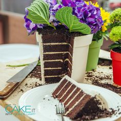 Flower Pot Cakes With Chocolate Cake & Coffee Buttercream! Flower Pot Cake, Fondant Flower Cake, Fondant Cakes, Fondant Bow, Fondant Tutorial, Fondant Figures, Cake Decorating For Beginners, Cake Decorating Supplies, Cupcakes