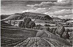 Winklebury Hillfort by Howard Phipps
