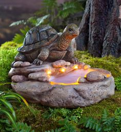 Turtle Birdbath with Solar Lights