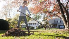 6 Ways To Help Make Your Lawn Ready For Winter