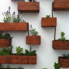 fall, Diy Indoor Herb Garden Wall Planter Mounted Living Buy Kitchen Ideas How To Make An: indoor herb wall garden