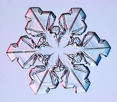 Sectored Plate Snowflake - photograph of a real snowflake