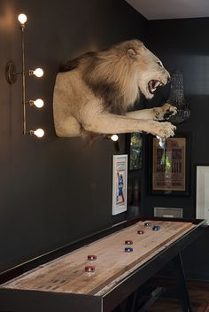 Homeplace: House Music | Garden & Gun 2015  Photo Credit: Caroline Allison. A (former) king of the jungle reigns over the shuffle board table in Followill's bar.