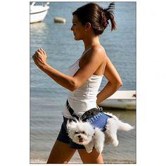 dog carrier - BLECGH!!!  NOOOOOOOOOO... poor puppy!