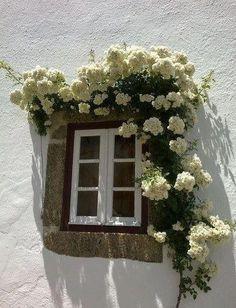 Window at Anafi, Greece