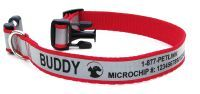 cool pet link id collar for microchip animals.  Reflective with your pets name and lets everyone know your pet is microchip