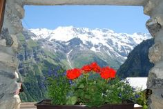 Gimmelwald, Swiss Alps at The Mountain Hostel. It even has a hot tub outside, overlooking this amazing view!