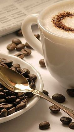 Looking for for ideas for good morning coffee?Browse around this website for unique good morning coffee ideas. These enjoyable pictures will bring you joy. Coffee Heart, I Love Coffee, White Coffee, Happy Coffee, Coffee Girl, Espresso Coffee, Good Morning Coffee, Coffee Break, Coffee Mornings