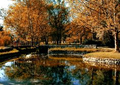 Topcider Park , Belgrade, Serbia http://www.belgradian.com/green-belgrade/?limit=100