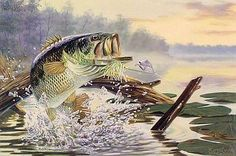 buzz off large mouth bass fish painting $50