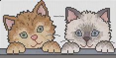 Angela Ricamo: cuccioli e gattini