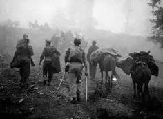No Justice - Greek Soldiers Of WWII Are Still in Mass Graves in Albania ~ HellasFrappe