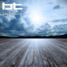Skylarking BT #music #relaxing #bt @Armada Music