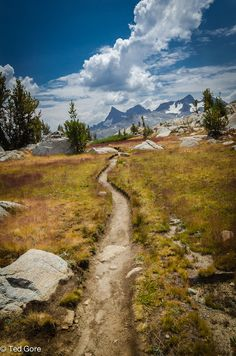 John Muir Trail, California. My favorite trail ever. 220 miles of pure bliss.