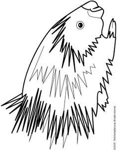 artcichare colering pages snowshoe hare colouring pages kyle s