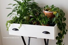 """Upcycled Drawer into a Plant Stand! It could also be a book  stand, night table, end table, """"tea"""" cart. The possibilities are endless!"""