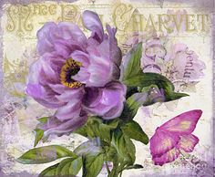 Painting - Purple Peony by Mindy Sommers