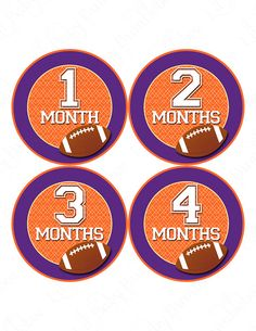 Special Moments stickers | Milestone Stickers, Monthly Baby Stickers, Monthly Bodysuit Stickers ...